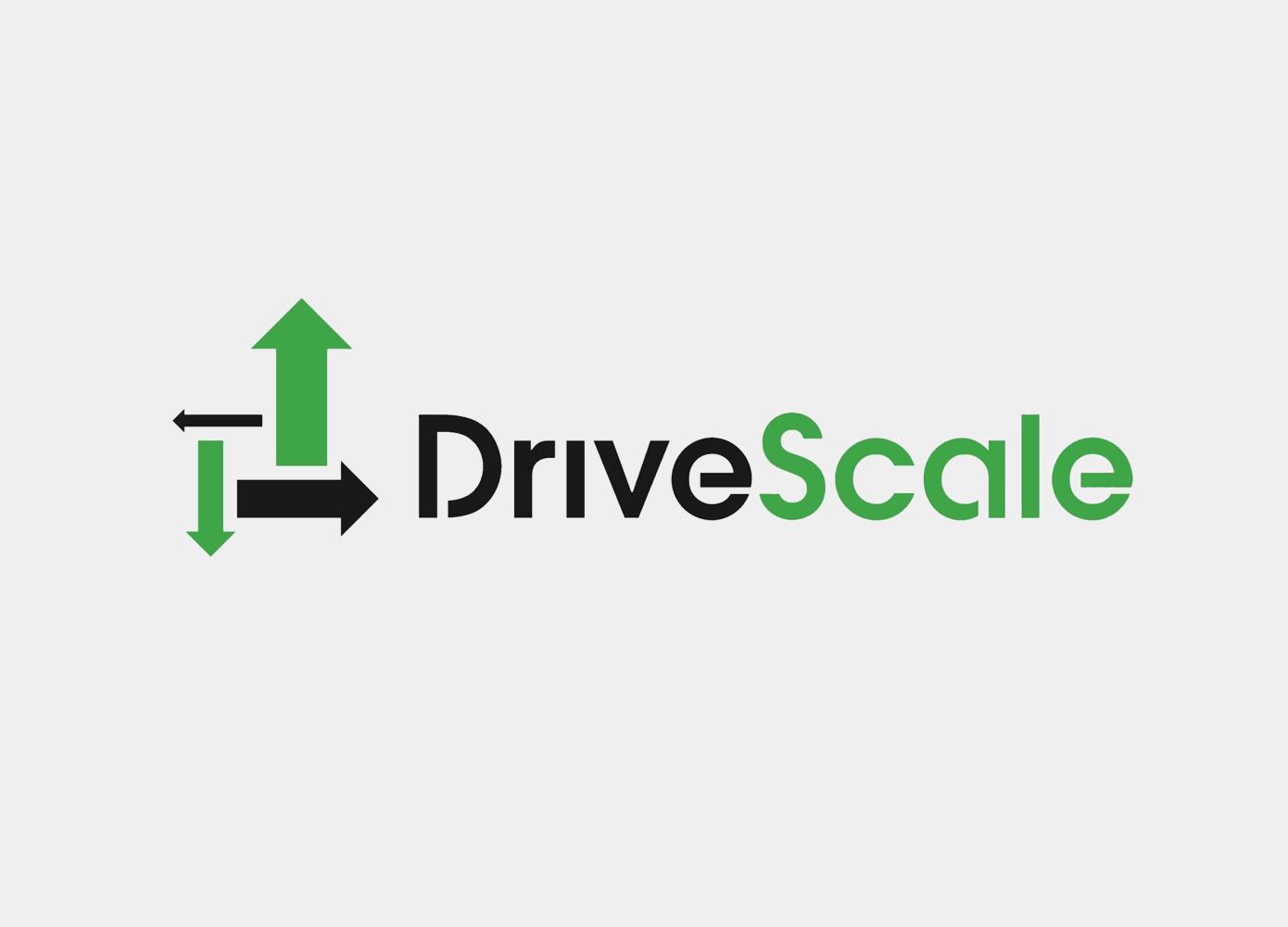 Drive Scale Logo